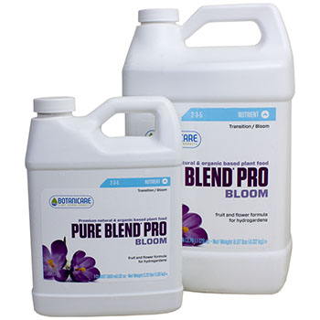 Pure Blend Pro - Bloom