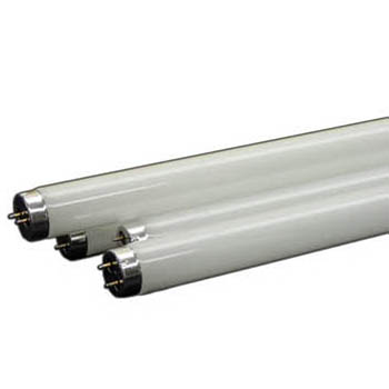 4ft HO 6500K T5 Fluorescent Tube