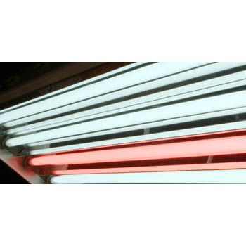 4' Pentron Red Fluorescent Tube