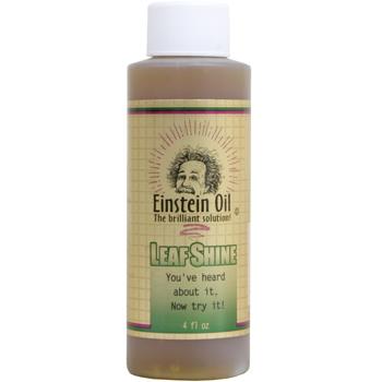 Einstein Leaf Shine Oil - 4 fl oz
