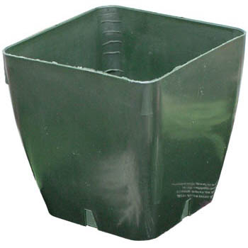 4.125 inch Square Green Plastic Pot