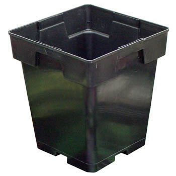 5 inch Square Black Pots